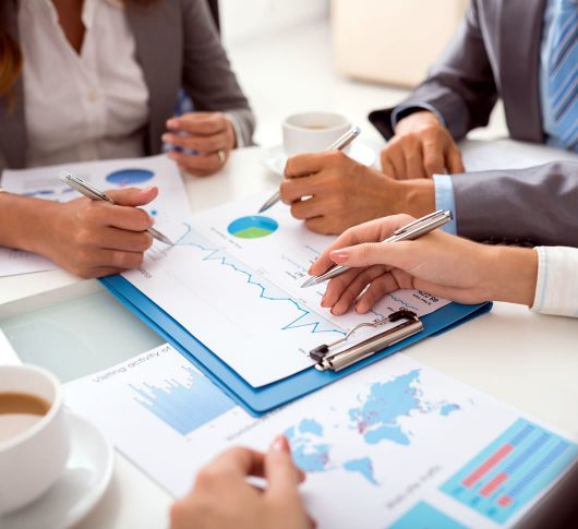 Expertise - Princeton Consulting